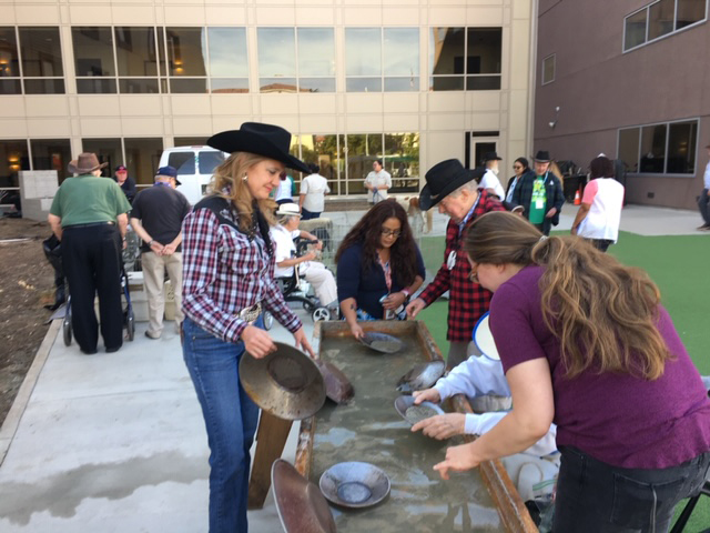 Gold Panning Activity